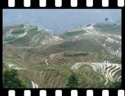 Čína 3
