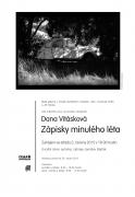 DANA VITÁSKOVÁ / ZÁPISKY MINULÉHO LÉTA
